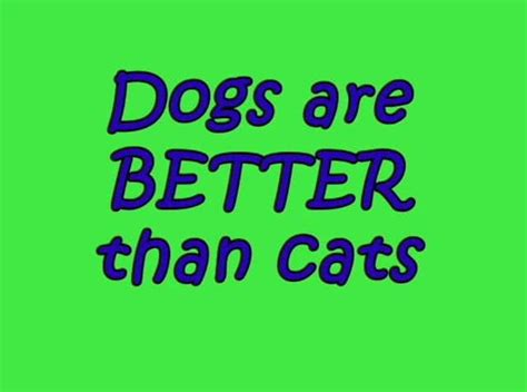 dogs are better than cats dogs are better than cats reason 487 on vimeo