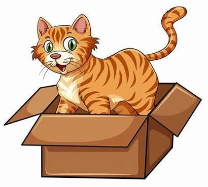 Cat Box Vector Cartoon Illustration Clipart Chat