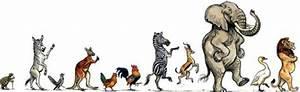 Karneval Schminken Tiere : kinderkonzert karneval der tiere ~ Frokenaadalensverden.com Haus und Dekorationen