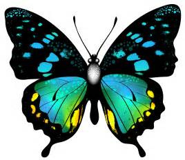 paper photo albums blue colorful butterfly png clip image gallery