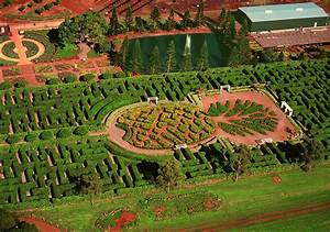 Dole Plantation The Maze For More Pictures And Photos