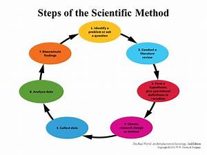 7 steps of the scientific method - DriverLayer Search Engine