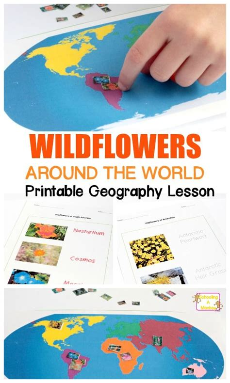 227 best geography activities for preschool kindergarten 548 | e1a10f8acc8acfb442ee355edf6a67f8 geography for kids geography lessons