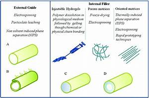 Engineering Strategies For Nerve Guidance Conduits