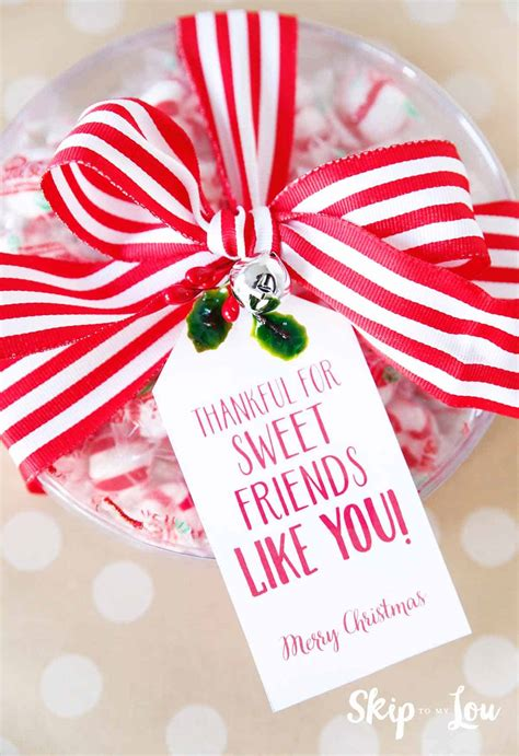 easy christmas gift ideas   super cute skip