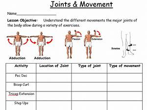 Ks3 Fitness Scheme Pack  14 Lessons  Worksheets