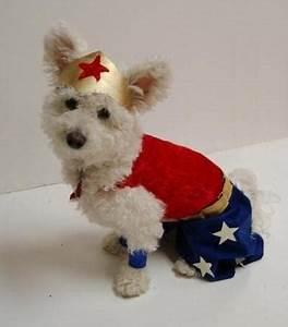 disfraces de Halloween para perros | El blog de Niqqi