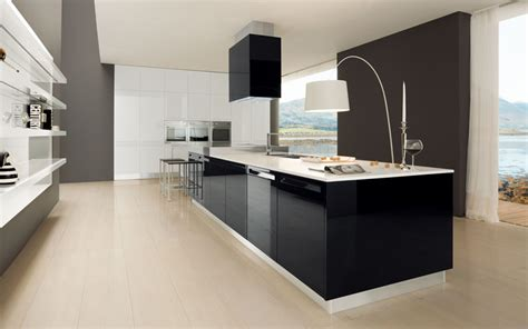 Cuisine Wenge Ikea by Interior Exterior Plan A Pleasing Kitchen That Is Simple
