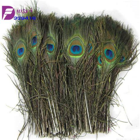 Peacock Feather Wholesale 500pcs Natural Long 10 12