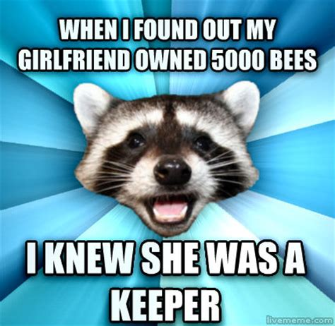 Bad Pun Raccoon Meme - livememe com lame pun coon