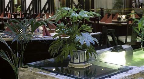 Lotus Garten Restaurant