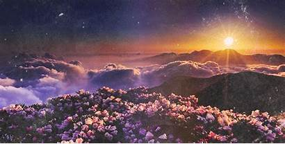 Flowers Sunset Gifs Animated Clouds Beauty