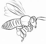 Coloring Pages Bee Printable Template Templates Bees Colouring Shape Simple Crafts Popular sketch template