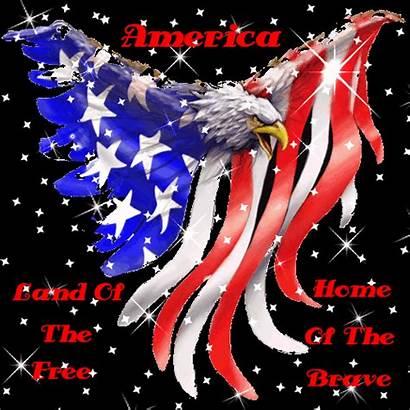 Eagle Gifs Glitter Usa America Pride American
