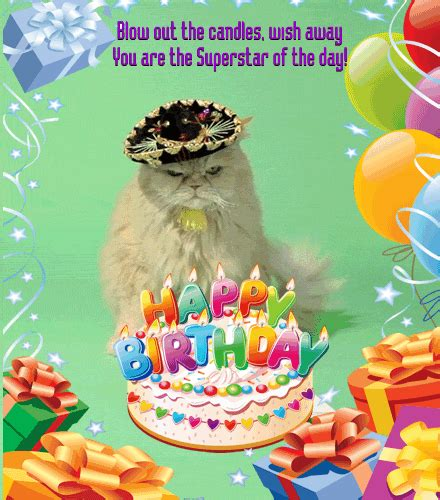 happy birthday  kitty  pets ecards greeting cards