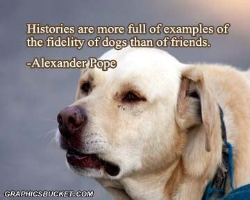 funny wallpapers dog quotes dog quote famous dog quotes