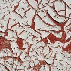 vinegar to remove paint residue from cement, brick or