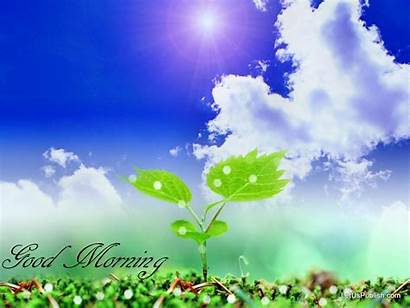 Morning Wallpapers Nature Wall Lovely