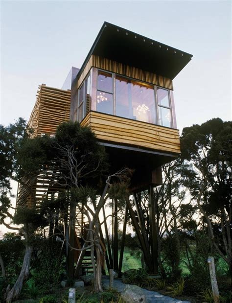 tree houses   whimsical   wildest dreams    exist