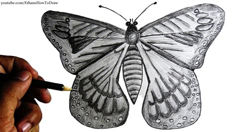 Draw, How To Draw A Butterfly For Kids