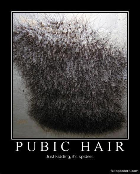 s pubic hair designs pubic hair straightening hairstyle 2013