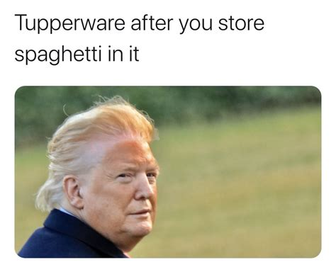 Trump Orange Face Memes - Tupperware After You Store