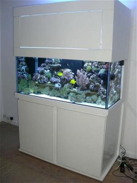 aquarium eau de mer occasion belgique aquarium eau de mer a vendre esth 233 tique
