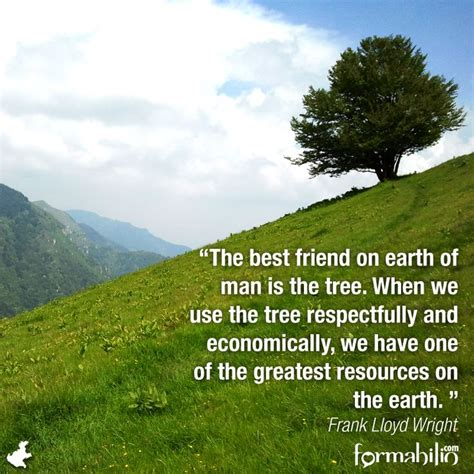 17 Best Images About Sustainable Quotes On Pinterest