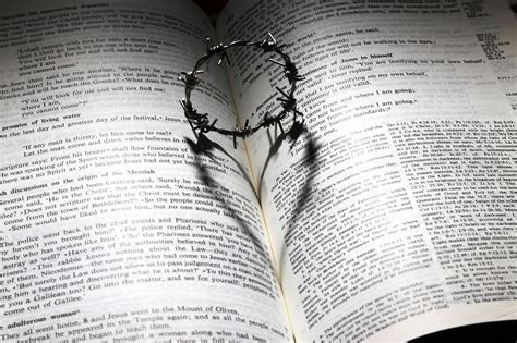 These 10 bible quotes on love from the bible are just a snapshot about what the bible. 20 Bible verses about God's unconditional love for us - Faith, Business, Knowledge