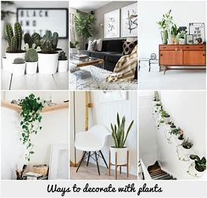 Ways to decorate with plants
