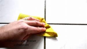 Fliesenfugen Reinigen Dampfreiniger : professionelle fugenreinigung ~ Michelbontemps.com Haus und Dekorationen