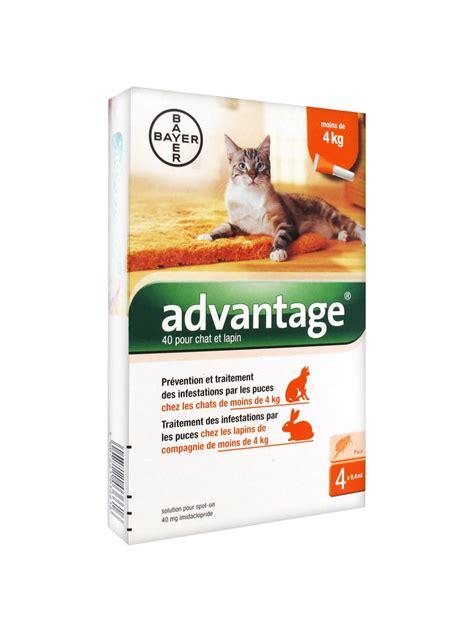 bayer advantage  antifleas solution  cat  rabbit