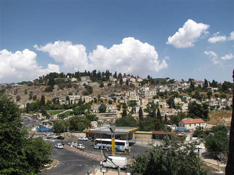 Coming Into The Light Of Aliyah