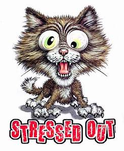 FUNNY STRESSED OUT CAT SWEATSHIRT WS727 | eBay