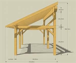 Appenti preau 300 cm x 600 cm castorama idees pour for Abri de jardin bois pas cher leroy merlin 5 auvent terrasse appenti bois carport tradi