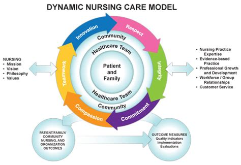 Nursing Biodata Model by Emerging Roles In Nursing Care And Accountability