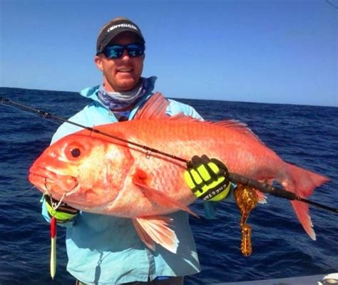snapper ruby caught giant biggest fish largest ever fishing fishes record saltwater ocean sea bluewater spearfishing tuamotu polynesia monster