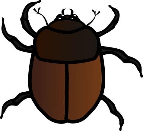 Bug Clip Clipart June Bug