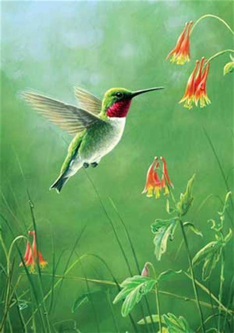 shop  hummingbird gifts beautiful  unique items