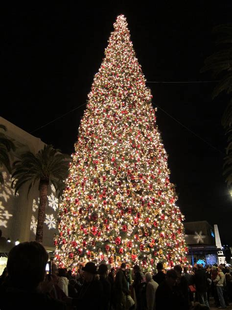 a garden path christmas tree in newport beach ca and munich germany