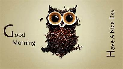 Morning Wallpapers Funny Background Coffee Greetings Fun