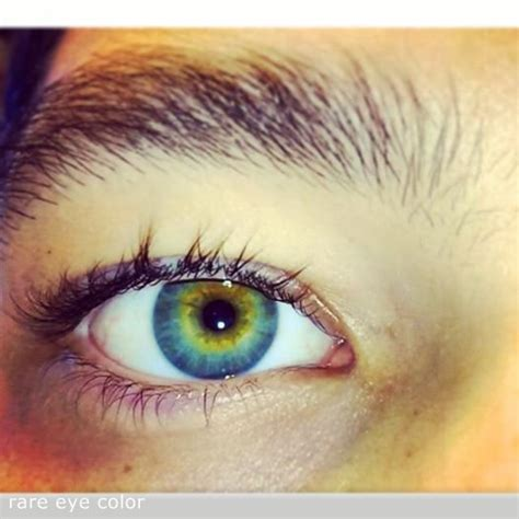what part of the eye has color pictures of blue green impremedia net
