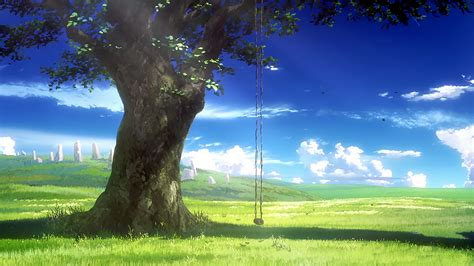 Tree Wallpaper Png by Shelter Hd Wallpaper Background Image 1920x1080 Id