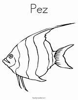 Cuttlefish Coloring Pages Getcolorings sketch template