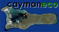 Cayman Eco - Beyond Cayman Blackouts In Texas And ...