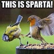 This Is Sparta Funny