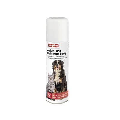 flohshampoo und zeckenshampoo fuer hunde tiierischde