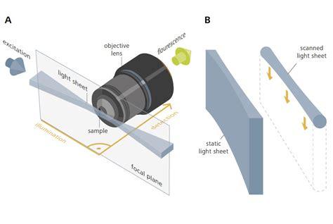 light sheet microscopy light sheet microscopy with zeiss lightsheet z 1
