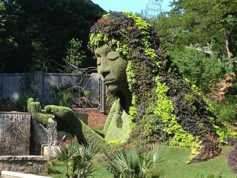 in plants picture of atlanta botanical garden
