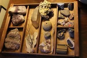build a cabinet of curiosities